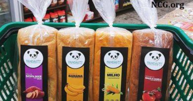 Pandafit : pães e bolos fit sem gluten e sem lactose