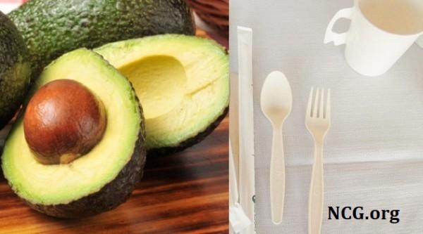 Caroço de abacate vira talher biodegradável sem gluten !
